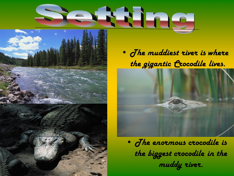 The muddiest river is where the gigantic Crocodile lives. The enormous crocodile is the biggest crocodile in the muddy river.