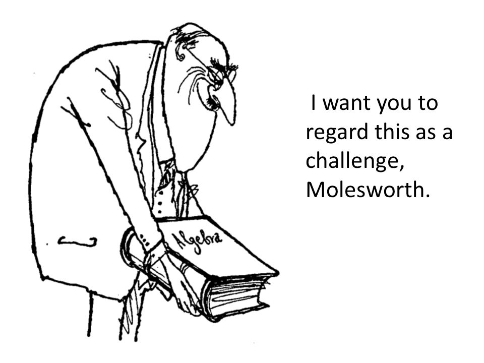 I want you to regard this as a challenge, Molesworth.