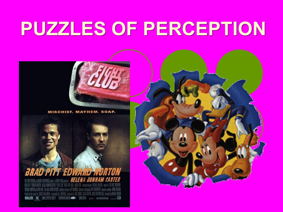 PUZZLES OF PERCEPTION