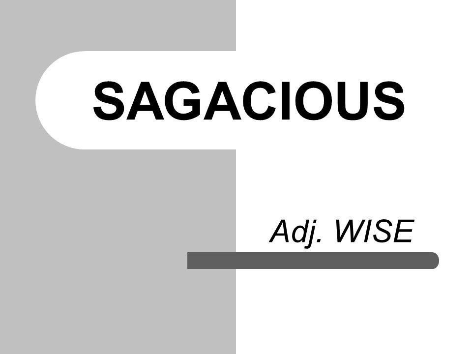 SAGACIOUS Adj. WISE