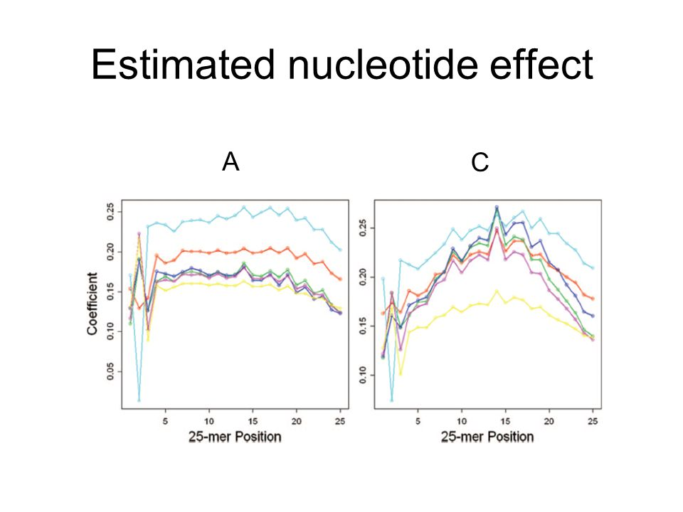 Estimated nucleotide effect A C