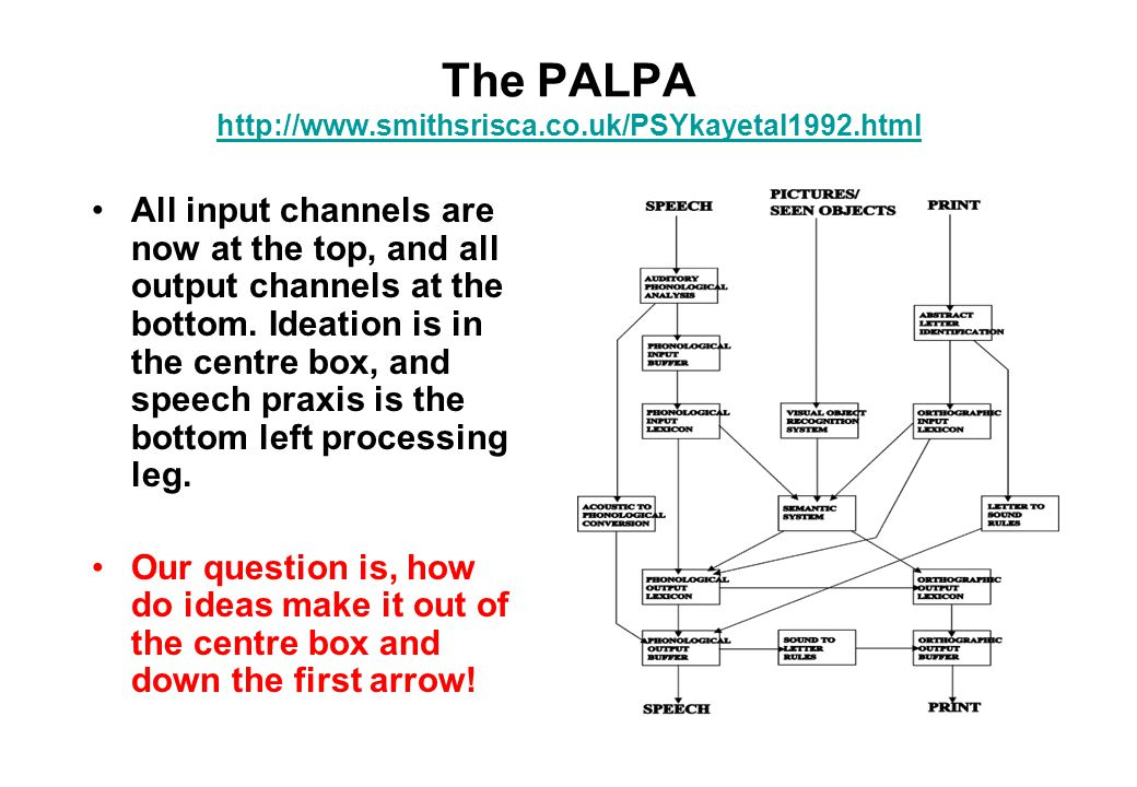The PALPA http://www.smithsrisca.co.uk/PSYkayetal1992.html http://www.smithsrisca.co.uk/PSYkayetal1992.html All input channels are now at the top, and all output channels at the bottom.
