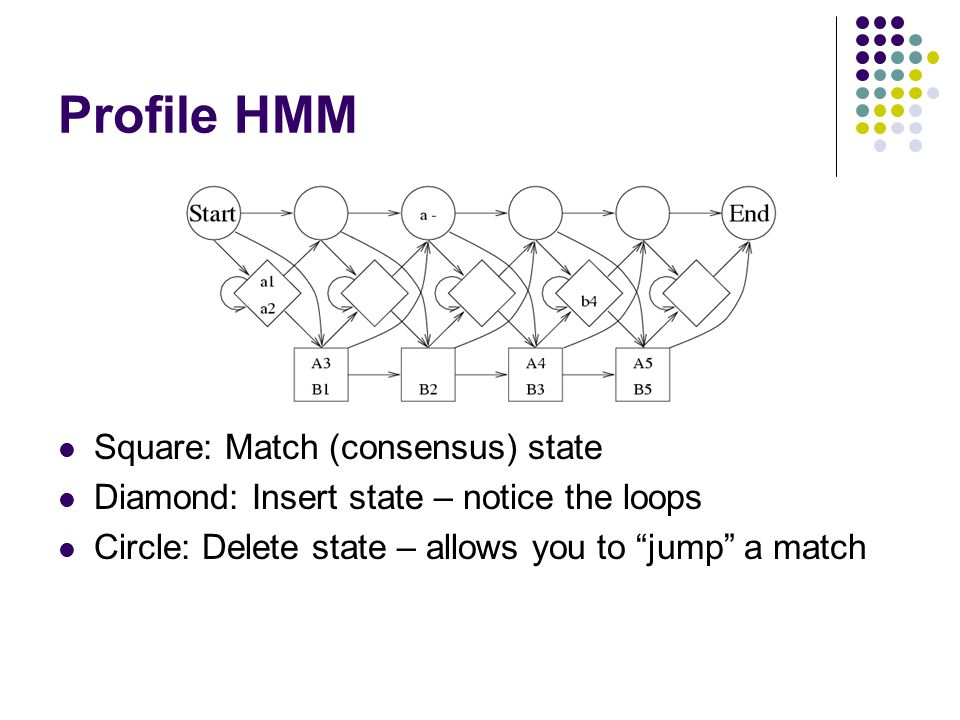 "Profile HMM Square: Match (consensus) state Diamond: Insert state – notice the loops Circle: Delete state – allows you to ""jump"" a match"