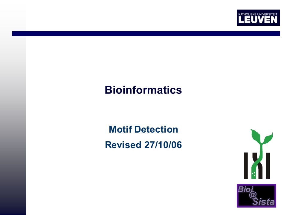 Bioinformatics Motif Detection Revised 27/10/06
