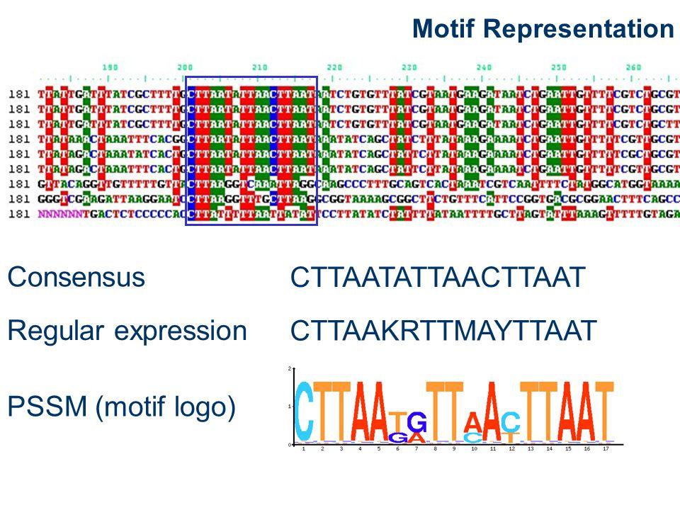 CTTAATATTAACTTAAT Consensus CTTAAKRTTMAYTTAAT Regular expression PSSM (motif logo)