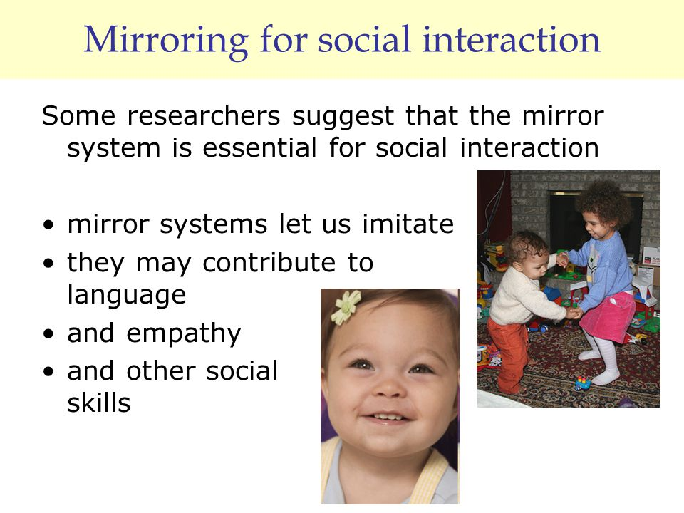 Mirroring for social interaction Some researchers suggest that the mirror system is essential for social interaction mirror systems let us imitate the