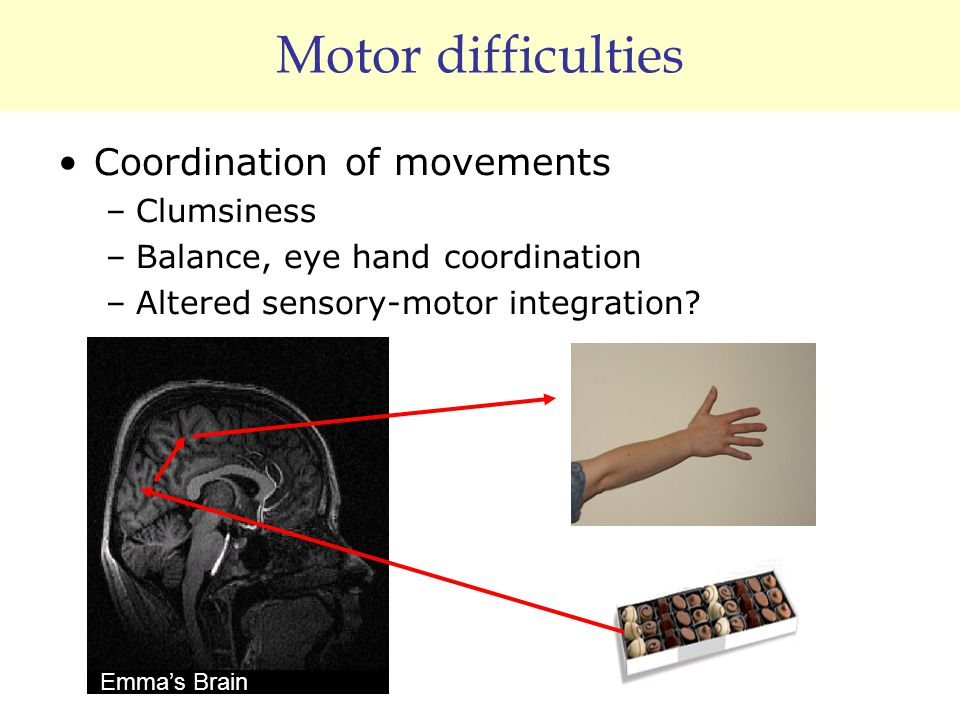 Motor difficulties Coordination of movements –Clumsiness –Balance, eye hand coordination –Altered sensory-motor integration? Emma's Brain
