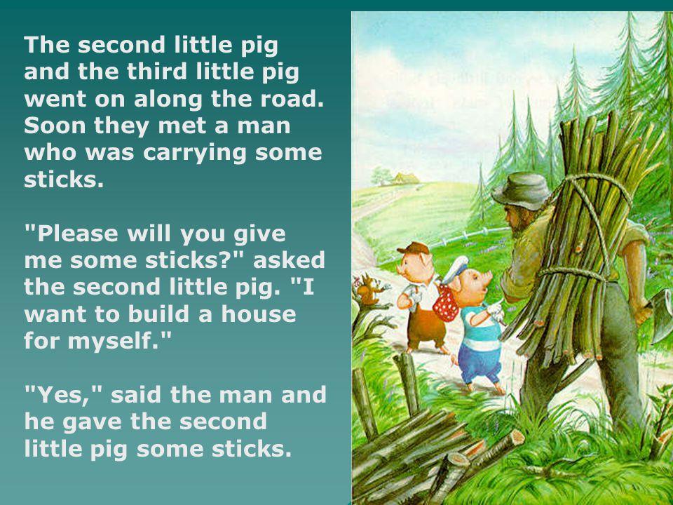  Then the second little pig built himself a house of sticks.