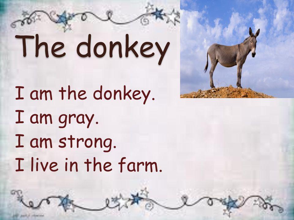 The donkey I am the donkey. I am gray. I am strong. I live in the farm.