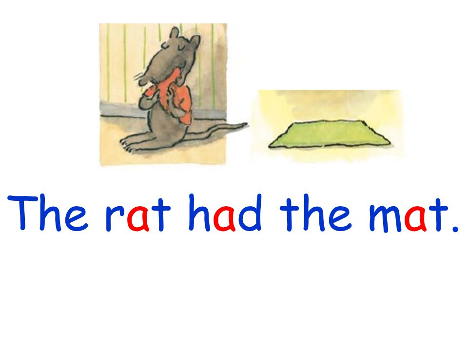 The rat had the mat.