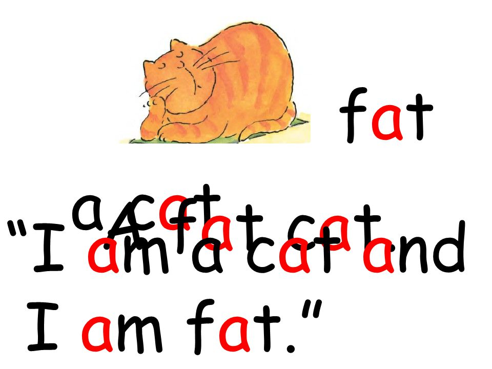 "a cat fatfat A fat cat. ""I am a cat and I am fat."""