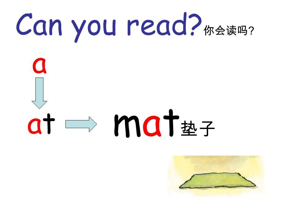 Can you read? 你会读吗 ? a atat mat 垫子