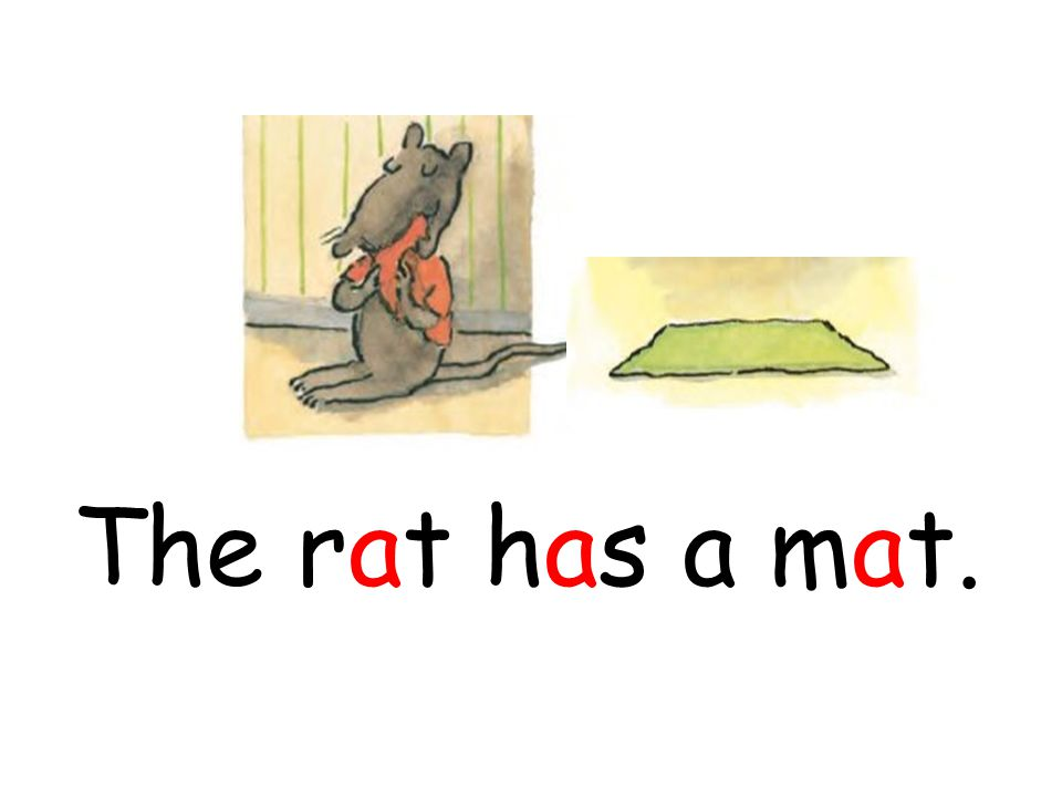 The rat has a mat.