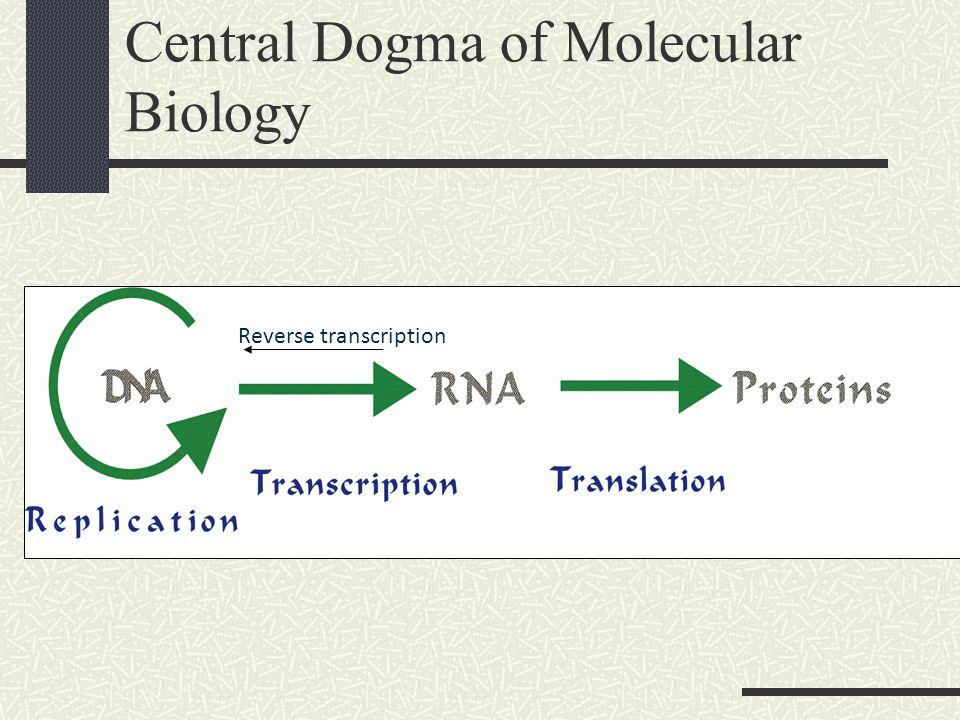 Central Dogma of Molecular Biology Reverse transcription