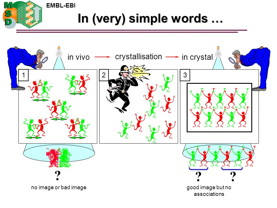 EMBL-EBI . no image or bad image In (very) simple words … 2 crystallisation 3 in crystal .