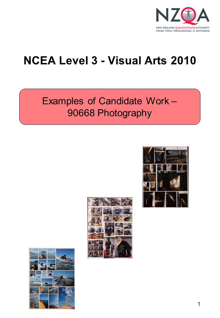 1 NCEA Level 3 - Visual Arts 2010 Examples of Candidate Work – 90668 Photography