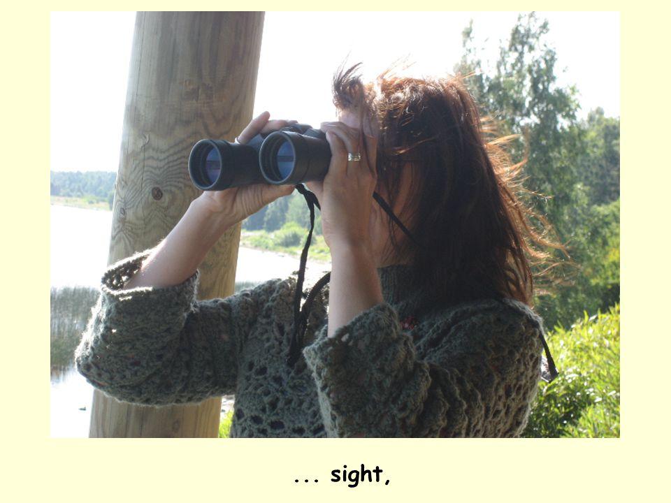 ... sight,