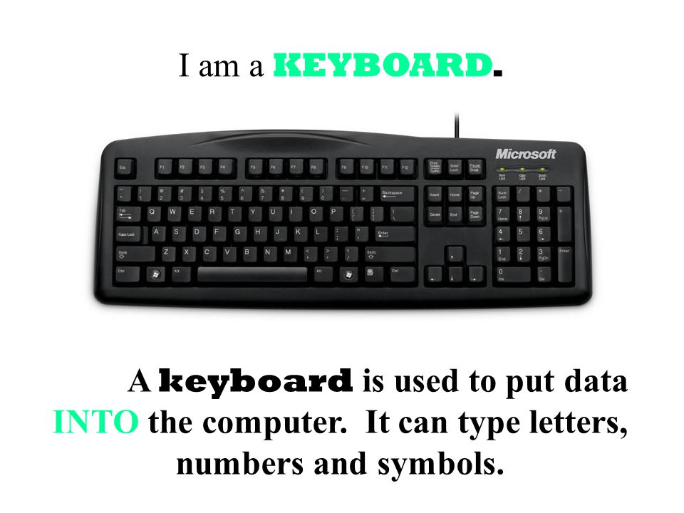 I am a KEYBOARD.A keyboard is used to put data INTO the computer.