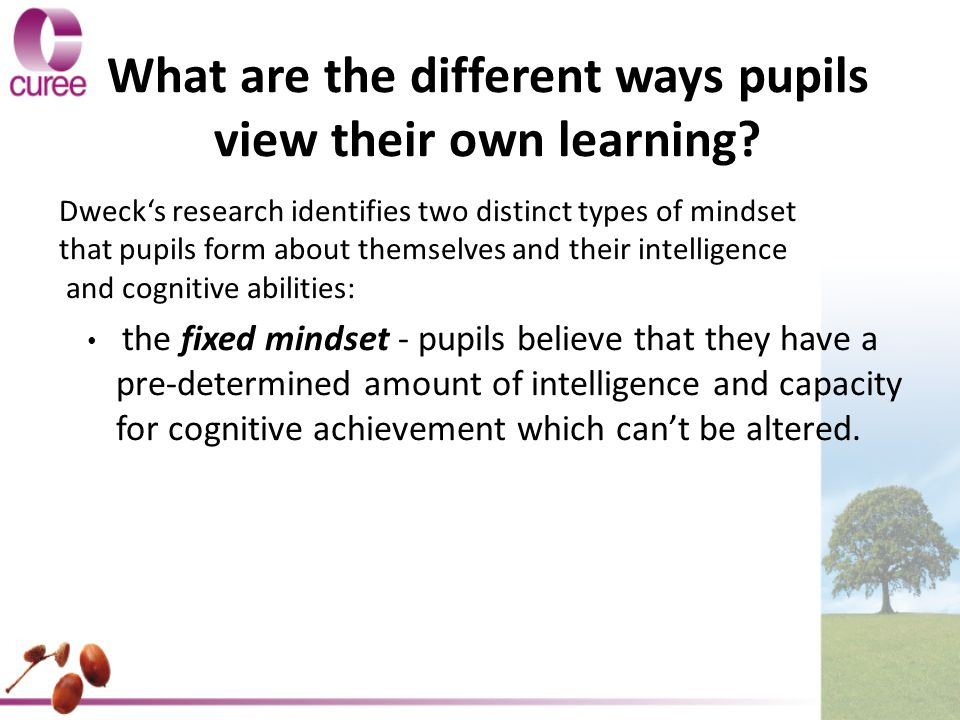 the growth mindset, in which pupils believe that their abilities and capacity can be developed by dedication and persistence and so are optimistic and resilient.