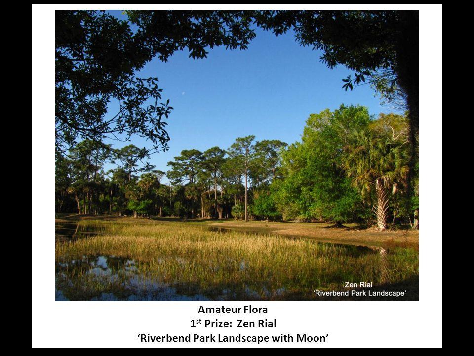 Amateur Flora 1 st Prize: Zen Rial 'Riverbend Park Landscape with Moon'