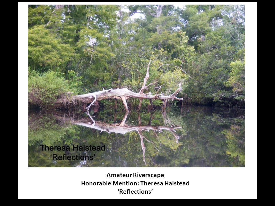 Amateur Riverscape Honorable Mention: Theresa Halstead 'Reflections'