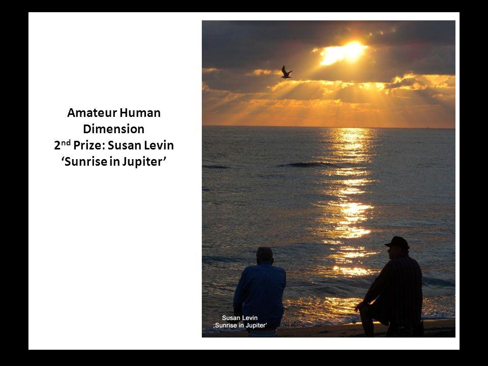 Amateur Human Dimension 2 nd Prize: Susan Levin 'Sunrise in Jupiter'