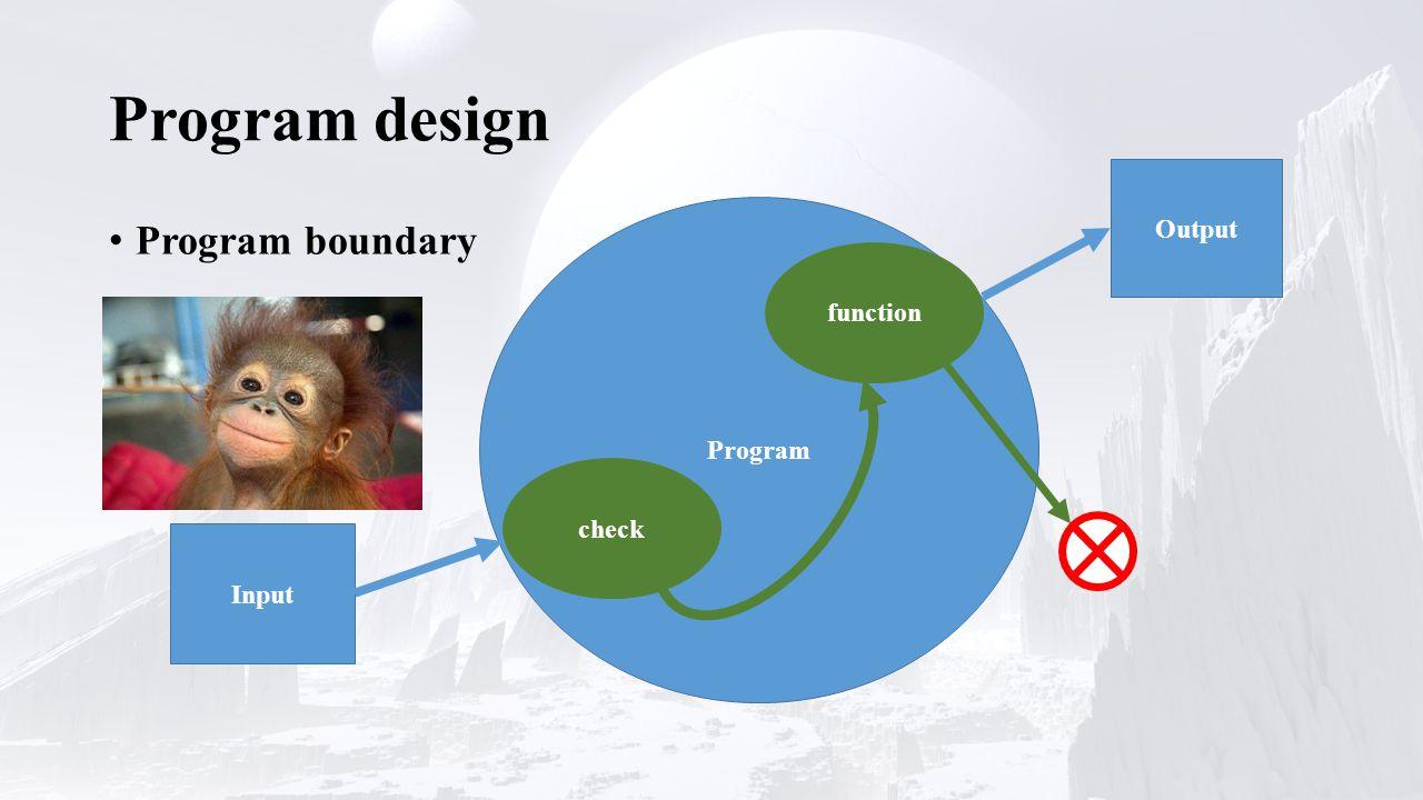 Program design Program boundary Program Input Output check function