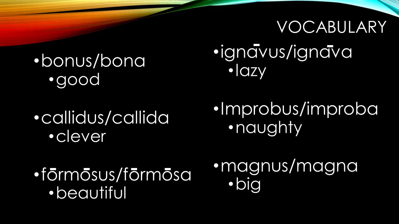 VOCABULARY bonus/bona good callidus/callida clever formosus/formosa beautiful ignavus/ignava lazy Improbus/improba naughty magnus/magna big