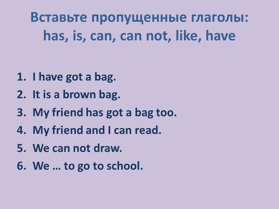 1.I have got a bag. 2.It is a brown bag. 3.My friend has got a bag too.