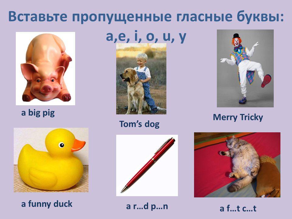 Вставьте пропущенные гласные буквы: a,e, i, o, u, y a big pig a funny duck a r…d p…n a f…t c…t Tom's dog Merry Tricky