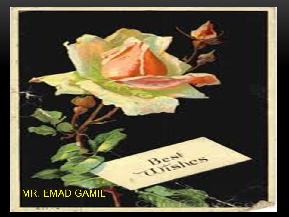 MR. EMAD GAMIL