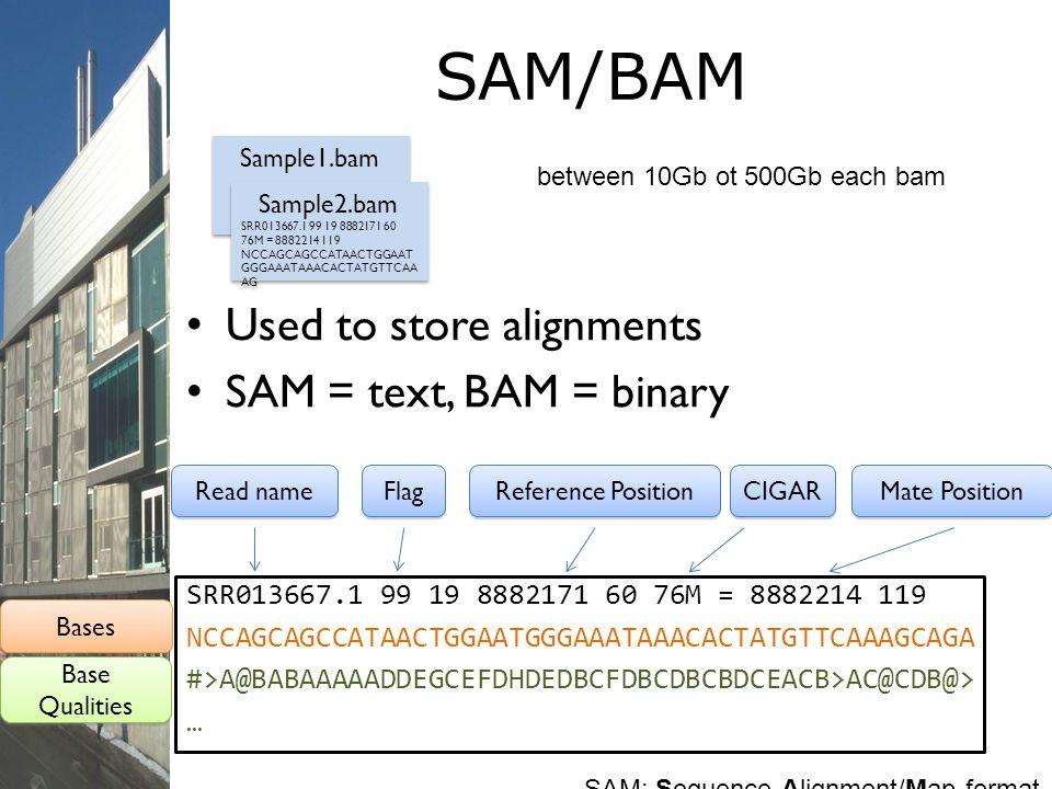 SAM/BAM Used to store alignments SAM = text, BAM = binary SRR013667.1 99 19 8882171 60 76M = 8882214 119 NCCAGCAGCCATAACTGGAATGGGAAATAAACACTATGTTCAAAG