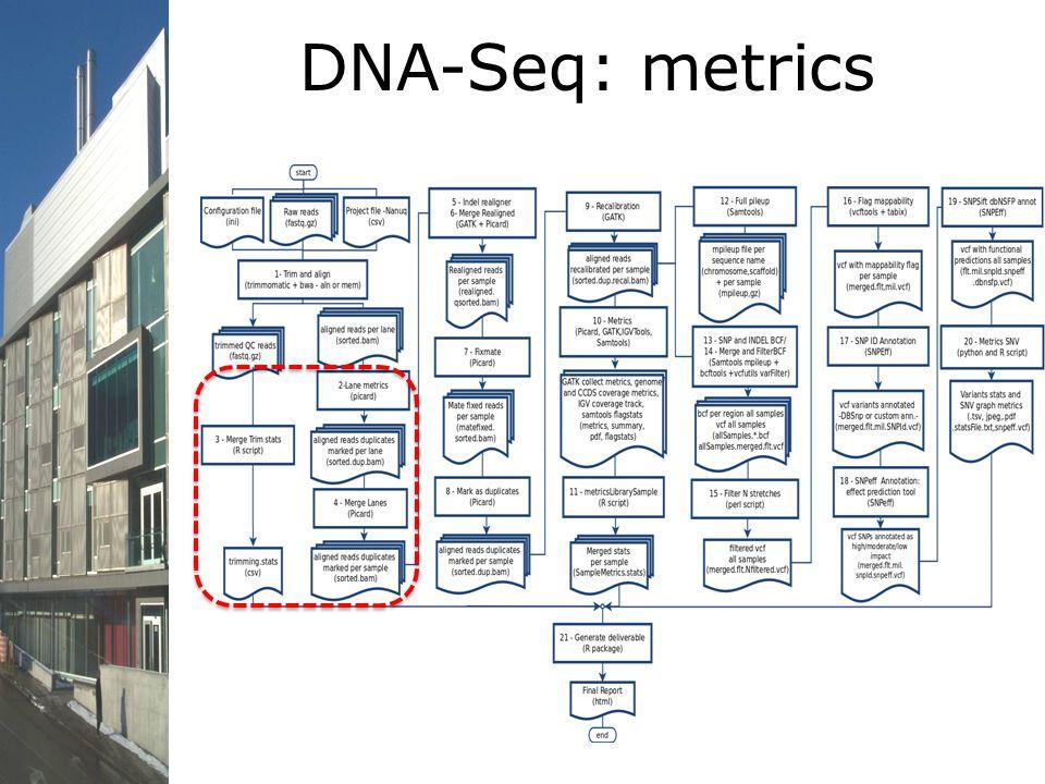 DNA-Seq: metrics