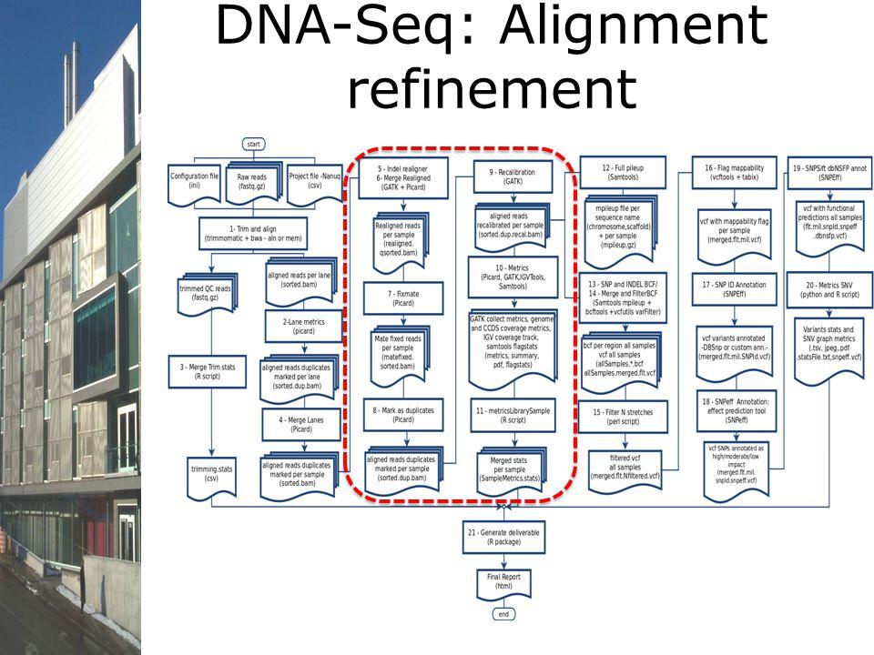 DNA-Seq: Alignment refinement
