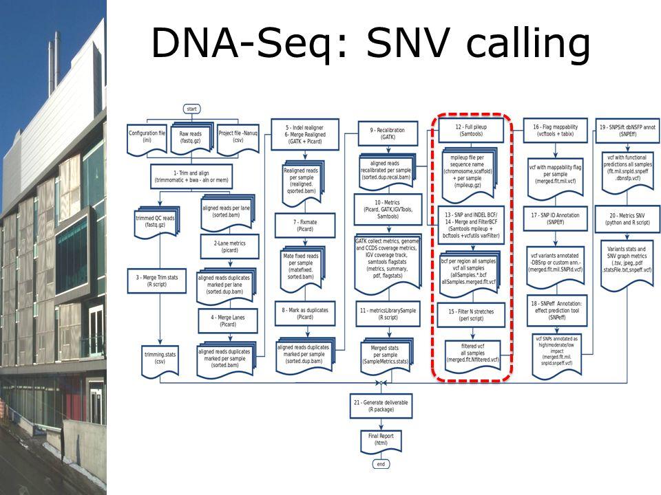 DNA-Seq: SNV calling