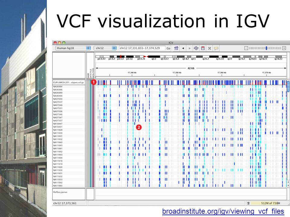 broadinstitute.org/igv/viewing_vcf_files VCF visualization in IGV