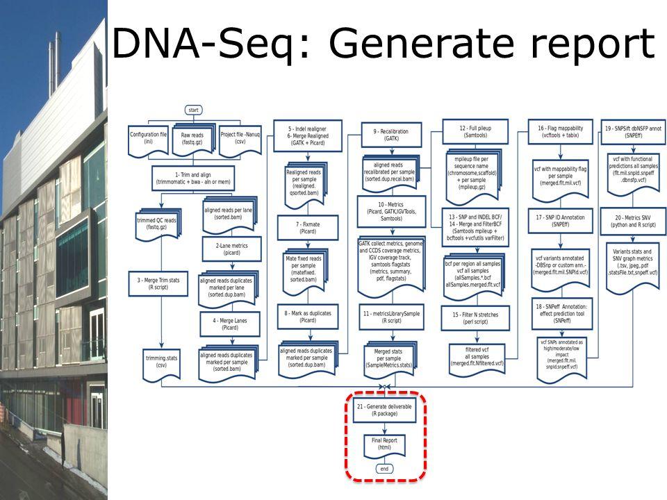 DNA-Seq: Generate report