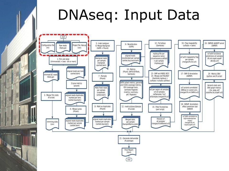DNAseq: Input Data