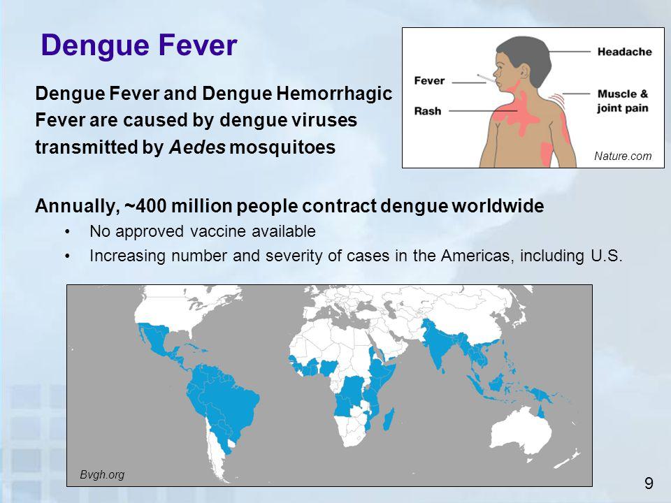 Ae. aegypti Humans Dengue Virus Emergence of Dengue Environment 10