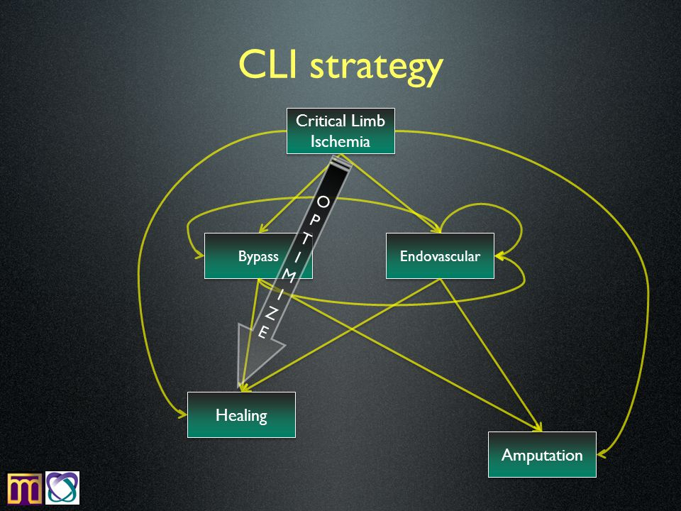 CLI strategy Critical Limb Ischemia Endovascular Bypass Amputation Healing OPTIMIZEOPTIMIZE
