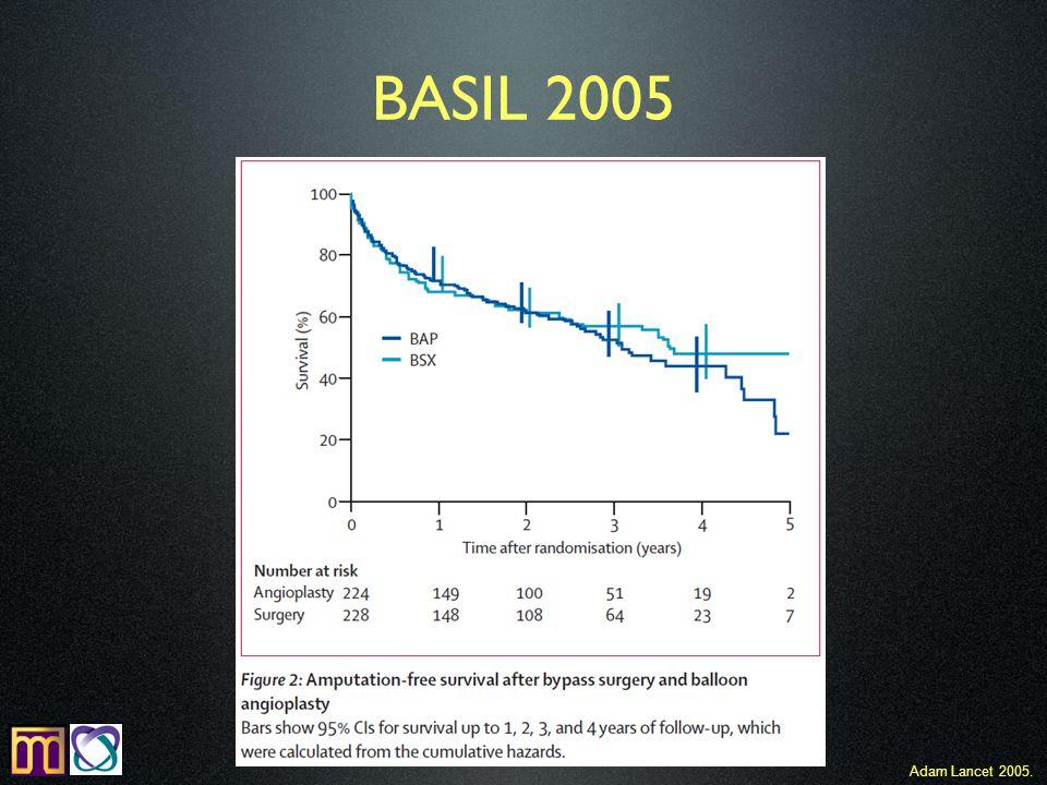 BASIL 2005 Adam Lancet 2005.