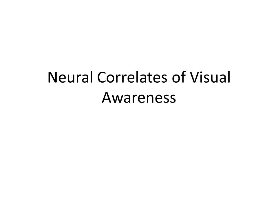 Neural Correlates of Visual Awareness