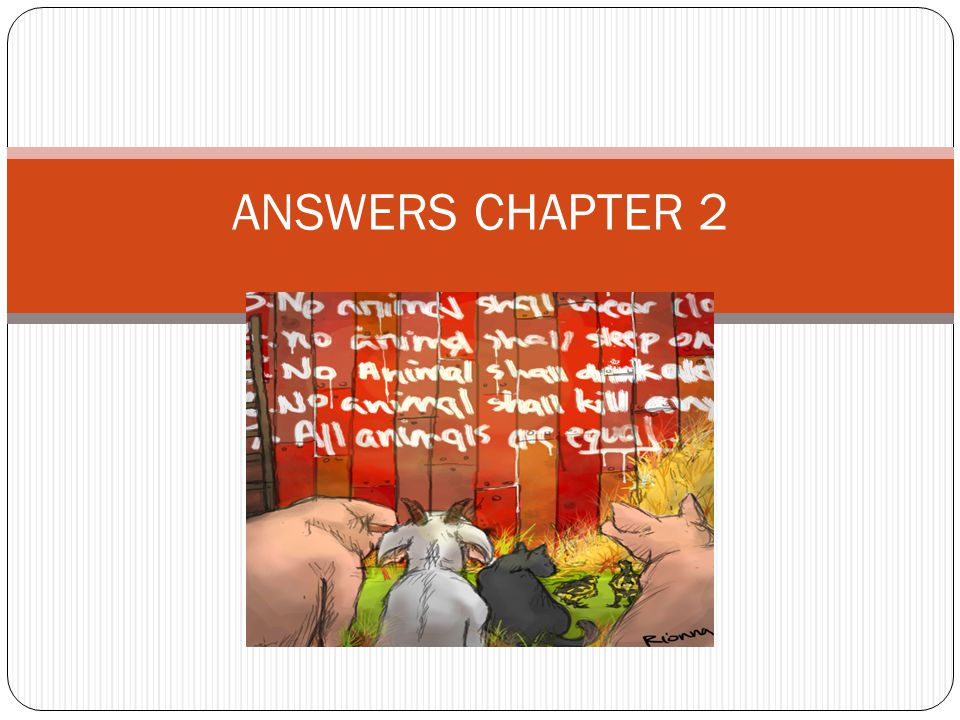 ANSWERS CHAPTER 2