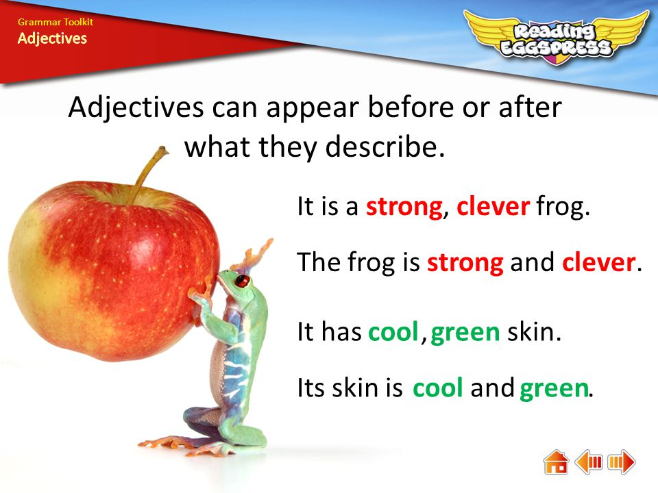 Grammar Toolkit Adjectives can appear before or after what they describe.