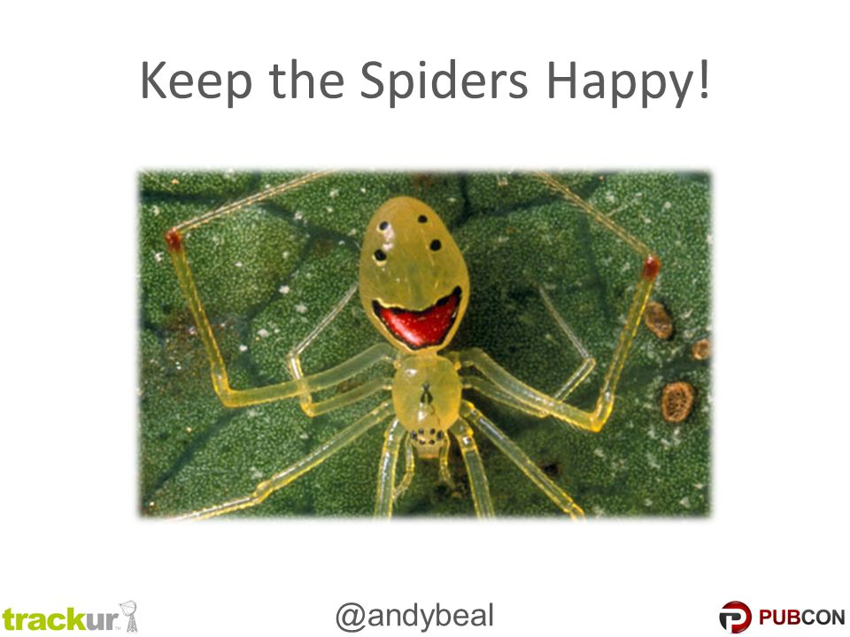 @andybeal Keep the Spiders Happy!
