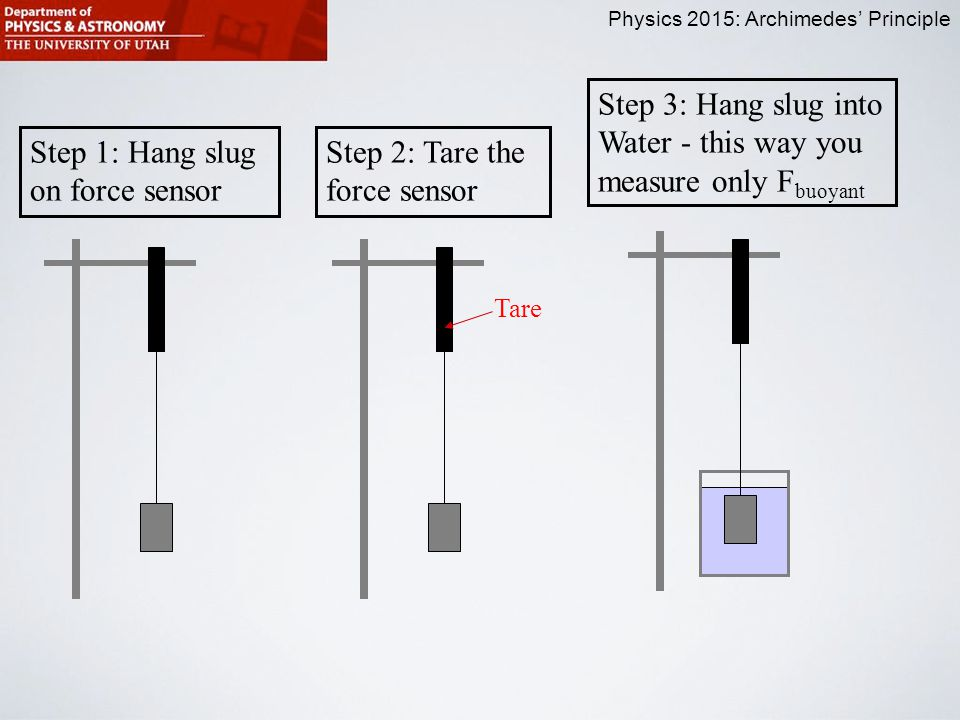 Physics 2015: Archimedes' Principle Step 1: Hang slug on force sensor Step 2: Tare the force sensor Step 3: Hang slug into Water - this way you measure only F buoyant Tare