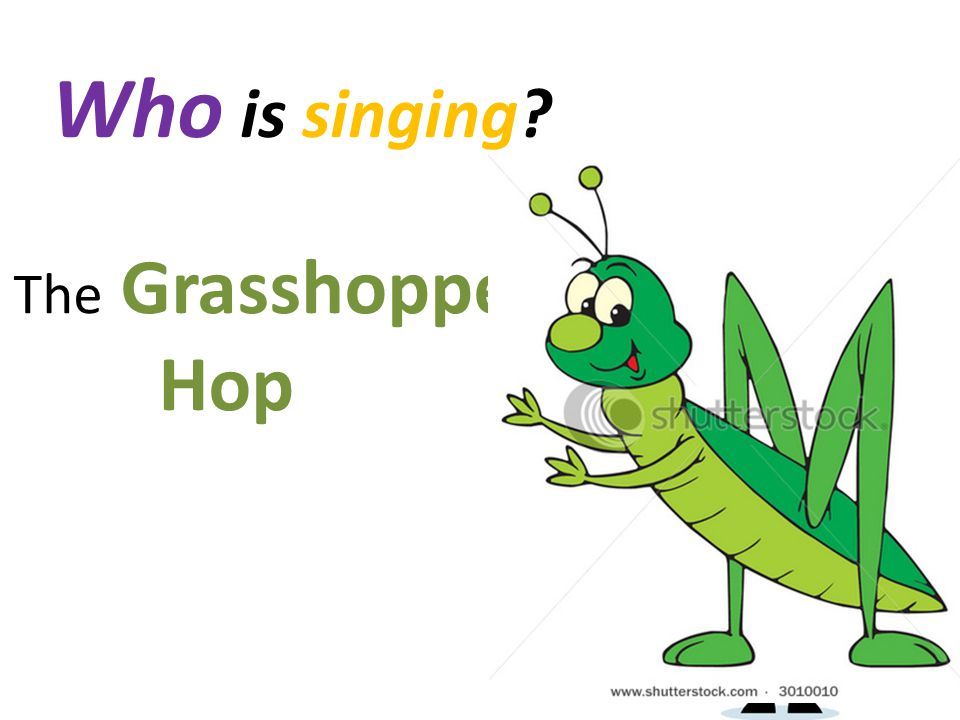 Who is singing? The Grasshopper Hop