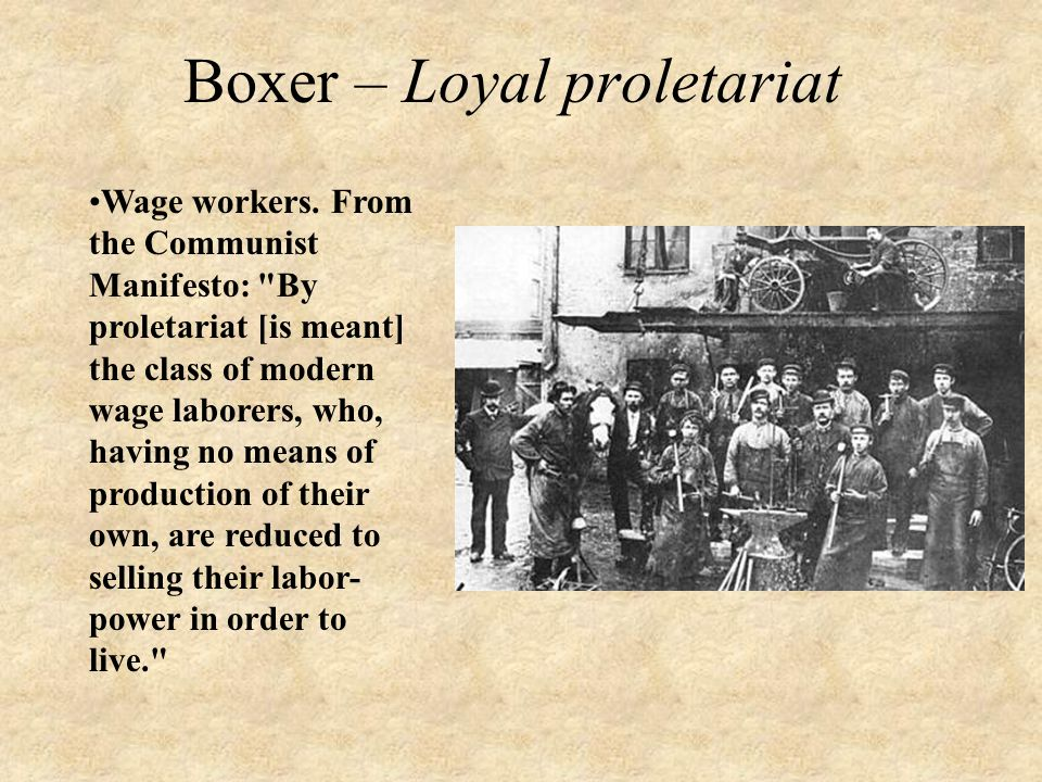 Boxer – Loyal proletariat Wage workers.