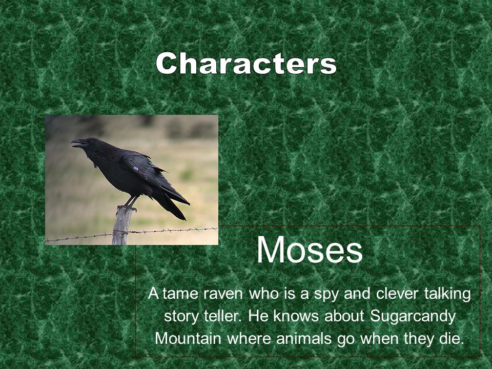 Moses A tame raven who is a spy and clever talking story teller.
