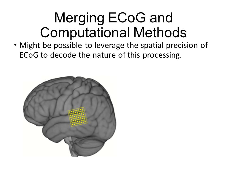 Merging ECoG and Computational Methods  Might be possible to leverage the spatial precision of ECoG to decode the nature of this processing.